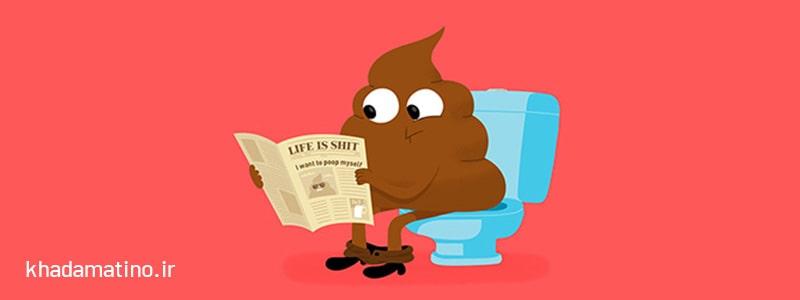 گرفتگی توالت فرنگی با مدفوع ، روش رفع گرفتگی توالت فرنگی با مدفوع ، رفع گرفتگی توالت فرنگی با مدفوع