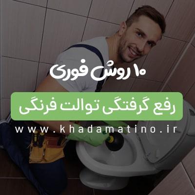 گرفتگی توالت فرنگی با مدفوع ، گرفتگی توالت با دستمال کاغذی ، رفع گرفتگی توالت فرنگی ، رفع گرفتگی توالت فرنگی با روش های خانگی